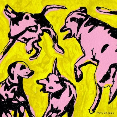 Paul Jacobs / Pink Dogs on the Green Grass